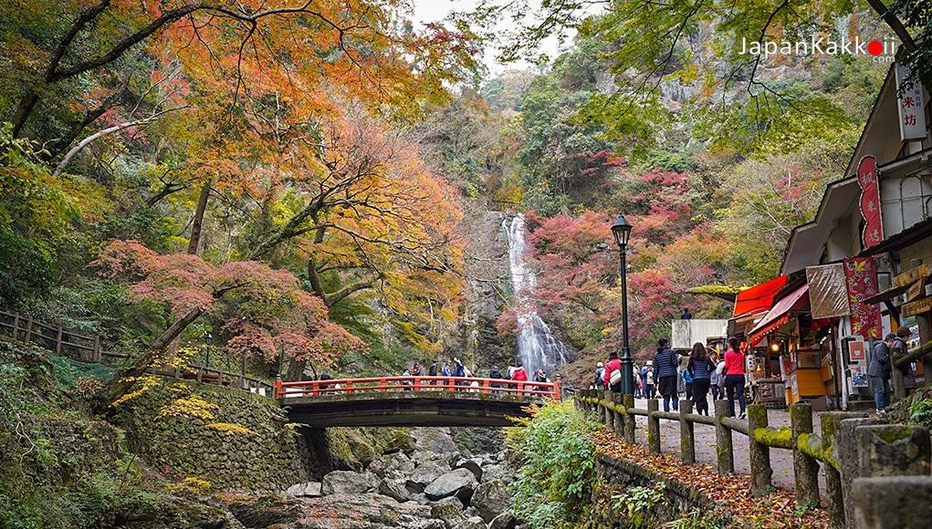 น้ำตกมิโน (Minoo Park / Meiji no Mori Minoh Park)