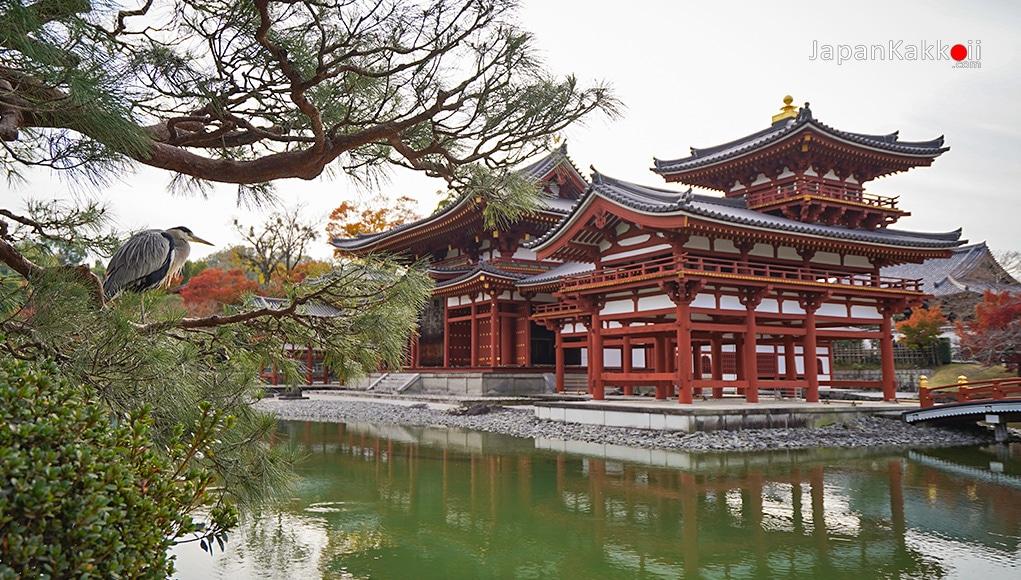 วัดเบียวโดอิน (Byodoin Temple) เมืองอุจิ (Uji)