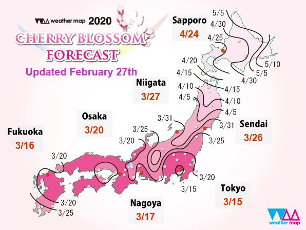ตารางพยากรณ์ซากุระบาน 2020 ที่ญี่ปุ่น