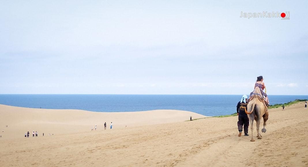Tottori Sand Dunes เนินทรายทตโตริ