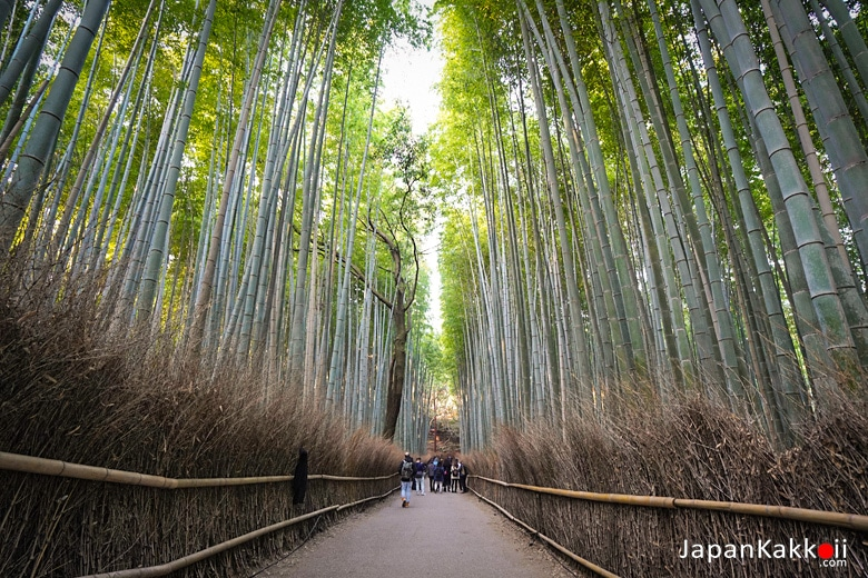 อาราชิยาม่า (Arashiyama / 嵐山)
