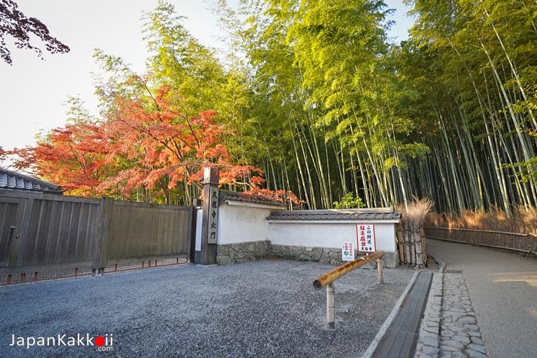 ทางเข้าวัดเทนริวจิ (Tenryuji Temple)
