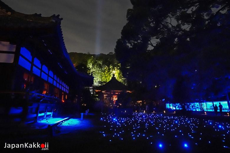 Shorenin Temple Kyoto Light up