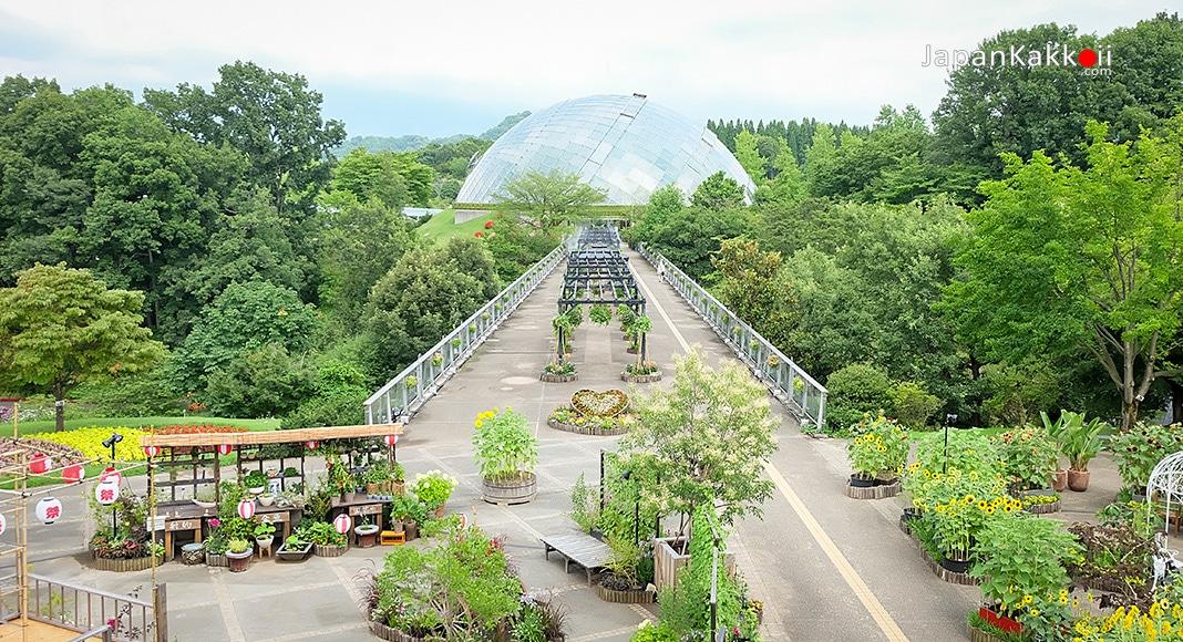 สวนดอกไม้ทตโตริ ฮานะไคโร (Tottori Hanakairo Flower Park)